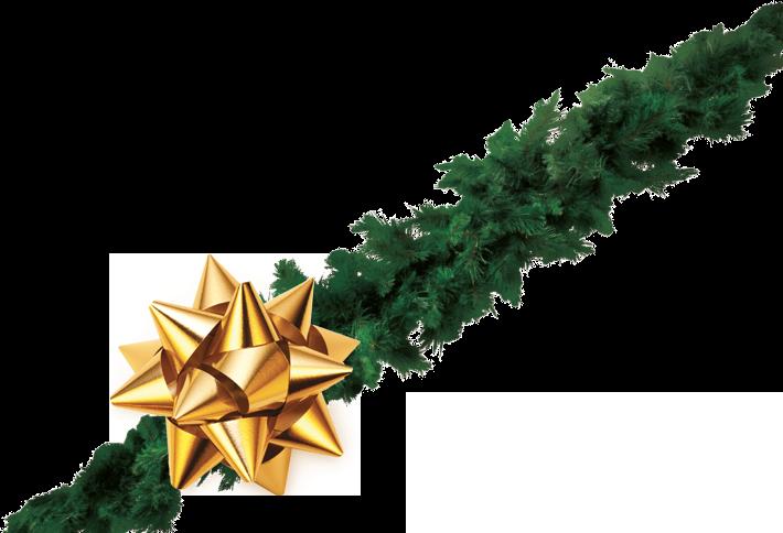 Vánoční kupóny pro Vás